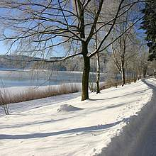 Winterwanderweg am Hennesee
